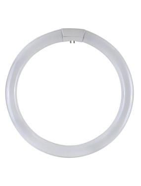 DURALAMP 4086T Circolina G10Q 40W 6500K Trifase